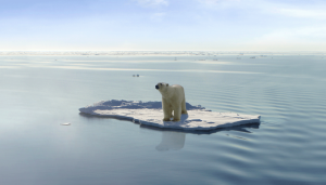 polar-bear-iceberg-id_723844.jpg