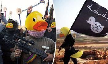 ____ducks